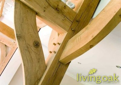 living_oak_gallery_00007