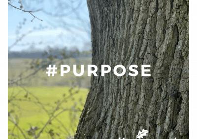 #purpose (2)